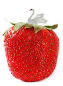 Time of strawberry. — Stock Photo