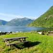 Stock Photo: Fjord coast.
