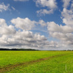 Pasture. — Stock Photo #12270368