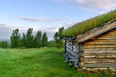 House with grass on the roof. — Stock Photo
