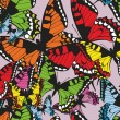 Colorful tropical seamless vector pattern with butterflies — Stock Vector