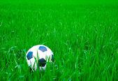 Fußball — Stockfoto