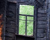 Gebrande houten raamkozijn met het oog op een groene bomen — Stockfoto