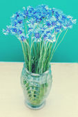 Cornflowers in vase — Stock Photo
