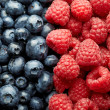 Blueberries and raspberries - Foto de Stock