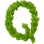 Letter Q of green leaves alphabet — Stock Vector