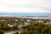 Tallin view with sea — Stock Photo