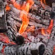Stock Photo: Bonfire