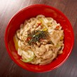Pork slice and udon-noodle — Stock Photo #11067289