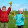 Royalty-Free Stock Photo: Boy and small girl  on meadow