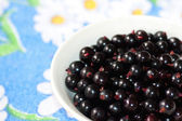 Black currant in a plate — Stock Photo