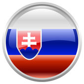 Flag of Slovak Republic — Stock Vector