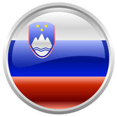 Republic of Slovenia flag — Stock Vector
