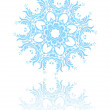 beautiful snowflake — Stock Vector