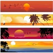 Tropical summer banner — Stock Vector
