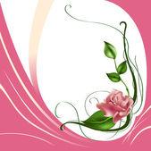 Beautiful rose — Stock Vector
