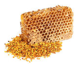 Honey honeycombs and pollen — Stock Photo