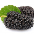 Mulberry with leafs — Stock Photo
