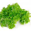 Green parsley — Lizenzfreies Foto