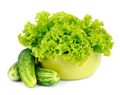Fresh salad leafs with cucumber — Stock Photo