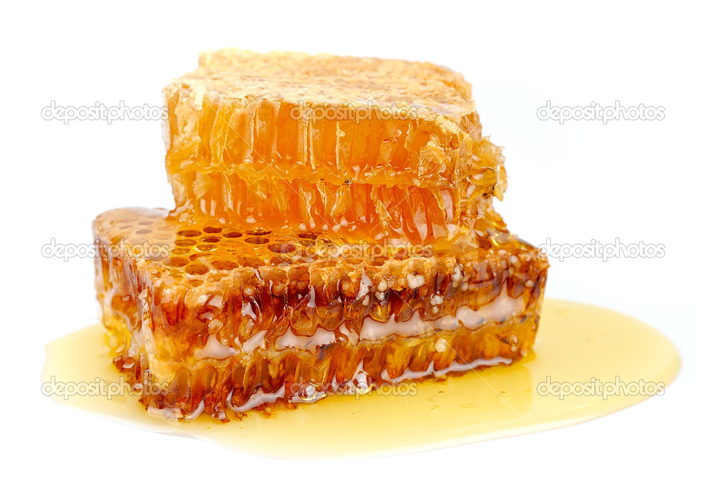 Honeycomb close up on the white  Stock Photo #10965463