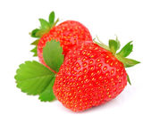 Sweet strawberry with leafs — Stock Photo