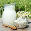 Stock Photo: House milk and cottage cheese