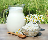 House milk and cottage cheese — Stock Photo