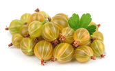 Fresh berry of a gooseberry — Stock Photo