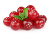 Sweet cranberries with leafs — Stock Photo