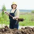 Stock Photo: Farmer spreads manure at field