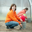 Family works in greenhouse — Stock Photo #11498624