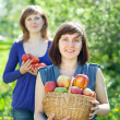 Happy  women with apple harvest - ストック写真