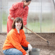 Happy women works at greenhouse - Stock Photo