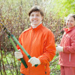 Women pruned branches in  garden - Stock Photo