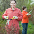 Stock Photo: Women cutting shrubbery
