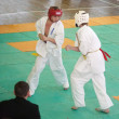 National championship among juniors by kyokushin karate - Zdjęcie stockowe