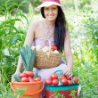 Happy woman with harvested vegetables — Stock Photo #11499483