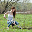 Woman planting tree outdoor — Stock Photo