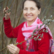 Mature woman in  pussywillow plant - ストック写真