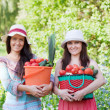 Royalty-Free Stock Photo: Happy women with vegetables