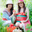 Women with harvested vegetables — Stock Photo