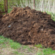 Stock Photo: Heap of manure