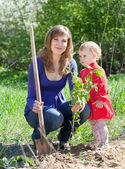 Woman with daughter sets bush — Foto de Stock