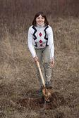 Female gardener planting tree — Stock Photo