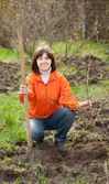 Woman plants tree in spring garden — Stock Photo
