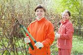Women pruned branches in garden — Stock Photo