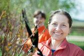 Female gardener cuts branches — Stock Photo