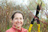 Mature woman pruned branches — Stock Photo
