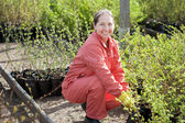 Female gardener chooses sprouts — Stock Photo